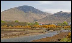 Lochranza (zweiblumen) Tags: uk scotland alba isleofarran lochranza polariser northayrshire eileanarainn canoneos50d zweiblumen lochraonasa