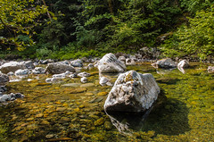 Koksilah River (johnscratchley) Tags: nature beauty river landscape stream outdoor stillness shallows
