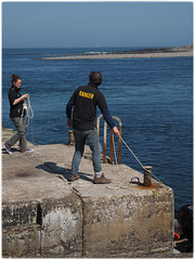 the boat trip ... welcome committee on Inner Farne island (BarbaraF1.4) Tags: trip boat northumberlandcoast