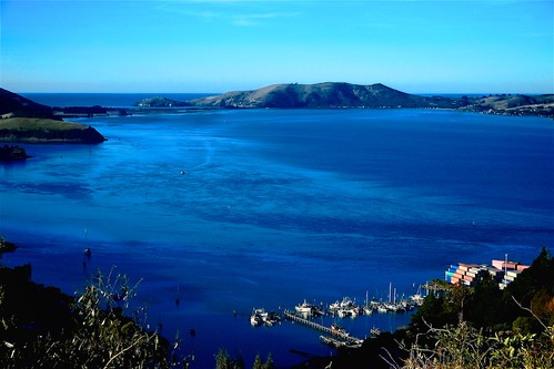 Careys Bay and Otago Harbour