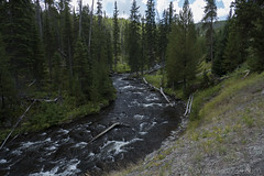 "Little Firehole River • <a style=""font-size:0.8em;"" href=""http://www.flickr.com/photos/63501323@N07/28322828036/"" target=""_blank"">View on Flickr</a>"
