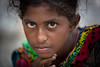 Inde: jeune nomade du Rajasthan. (claude gourlay) Tags: inde india asie asia indedunord northindia claudegourlay portrait retrato ritratto ritratti people enfant girl rajasthan chandelao face