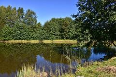 Etang Le Juge (Diegojack) Tags: france vosges milletangs paysages calme eau verdure nature reflets srnit beulottesaintlaurent
