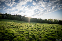 The morning sun (JCPhotodesign) Tags: morning sky sun field clouds forest tokina wald greifenstein knoten 1116 arborn ilca77ii westerald