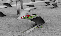 Pentagon Memorial (nadine3112) Tags: arlington colorkey colorkeying pentagonmemorial