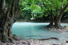La foresta incantata (piper969) Tags: park trees parco nature water alberi forest thailand natura acqua thailandia erawan foresta parconaturale