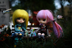 Innocent World (dreamdust2022) Tags: school music cute sexy girl rock happy riley star doll little sweet young dal kind singer shirley strong brave charming middle suki magical darling playful elementary yume fearless adventurer desingns