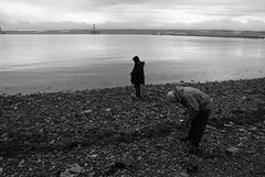 Beach combing (What I saw...) Tags: beach ollie moray firth combing invergordon