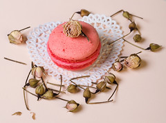 flowers set macaroon (mouse_adikatz) Tags: pink party food white france flower nature rose french dessert sweet pastel n retro sugar petal gourmet macaroon gift snack pastry valentines variation elegance styled