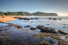 Don't step on the living things (JustAddVignette) Tags: australia beach calmwater early headland intertidalzone landscapes longexposure morning newsouthwales northernbeaches ocean peaceful rocks sand sea seascape seawater sunrise sydney turimetta water