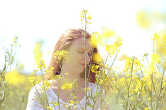 Softness of a spring afternoon (stefaniebst) Tags: light portrait woman sunlight girl field fashion yellow spring soft poetry sweet outdoor femme fineart softness dream poetic portraiture dreamy sweetness dreamer extrieur printemps champ dreamscape fineartphotography colza blondhair afternoom moderntale
