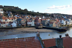 Rooftop Whitby (Tony Worrall Foto) Tags: homes roof sea chimney holiday buildings town seaside scenery rooftops yorkshire scene resort east tiles whitby slate eastern northyorkshire yorks bythesea seasidetown whitbyphotos yorkshirephotos photographsofwhitby