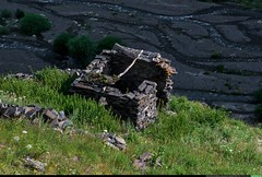 1487931_968983999816363_6193719949220723528_o (Sulkhan Bordzgor) Tags: chu ital chechnya