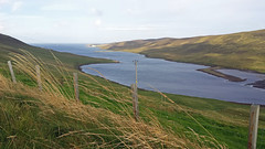 Shetland Islands 2015 (Sweet Mango 1965) Tags: 2015 shetlandislands
