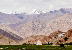 Chemdey Monastery (ashwin kumar) Tags: green leh ladakh kashmir chemdeymonastery chemdey monastery himalayas