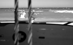 esprit surf (glookoom) Tags: bw blanc blackandwhite black bokeh monochrome mer contraste vague surf lumire light ligne libert landscape dtail extrieur ennoiretblanc t eau gris