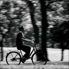 F_DSC3463-BW-Nikon D800E-Nikkor 24-70mm-May Lee  (May-margy) Tags: maymargy  bw             taiwan repofchina streetviewphotographytaiwan linesformandlightandshadows fdsc3463bw portrait panning biker bicycle blur bokeh park taipeicity nikond800e nikkor2470mm maylee