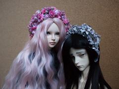 zuiop (michellebebe) Tags: bjd abjd fairyland feeple60 feeple mirwen immortalityofsoul mezz hybrid doll