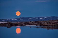 Mond (efgepe) Tags: 2016 skandinavien norwegen norway norge noreg mond moon moonrise mondaufgang farbe color colour nik viveza lightroom