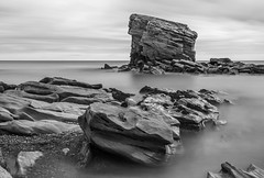 B&W Charlies Garden (Ellieslion) Tags: bw ellieslion seatonsluice charliesgarden northeastengland northumberland longexposure leebigstopper