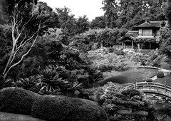 Japanese Tea Garden (Noel Leone--my reality in and out of focus) Tags: teagarden teahouse huntingtongardens sanmarino california japanesegarden monochrome bw japanesebridge pond