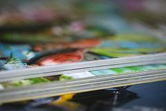 glossy (Elly Snel) Tags: ansh challenge magazine tijdschrift paper papier kleur colour