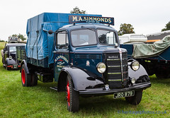 IMG_5531_Bedfordshire Steam & Country Fayre 2016 (GRAHAM CHRIMES) Tags: bedfordshiresteamcountryfayre2016 bedfordshiresteamrally 2016 bedford bedfordshire oldwarden shuttleworth bseps bsepsrally steam steamrally steamfair showground steamengine show steamenginerally traction transport tractionengine tractionenginerally heritage historic photography photos preservation classic bedfordshirerally wwwheritagephotoscouk vintage vehicle vehicles vintagevehiclerally vintageshow rally restoration otype lorry 1948 jro879