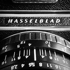 Hasselblad 501 CM  INTERPHOTO (Interphotolab) Tags: 120 6x6 digital 35mm xpro bn foam 4x5 6x9 pelicula 6x7 e6 laboratorio 9x12 montajes plotter diapositivas escaneado c41 analogico impresion negativos duplicados plastificados 10x12 escaner 13x18 granformato procesado 20x25 medioformato hahnemhle proceso formatomedio dibond interphoto ampliaciones madrid positivado laboratoriofotogrficoenmadrid cruzado revelado tintaspigmentadas impresingicle