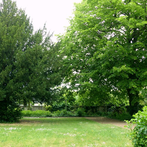 Park der evangelischen Kirche in Selzen