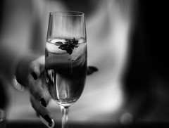 Have a drink (sven1103) Tags: blackandwhite white black drink