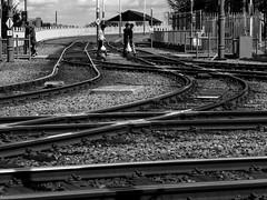 Tramlines (PaulEBennett) Tags: urban blackandwhite mono sheffield tramlines tramline dmctz35