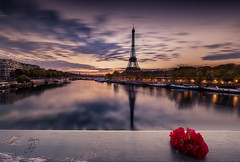 """La vie en rose"" (Me_eky) Tags: sky paris france flower color reflection water seine clouds composition sunrise eau ledefrance tour eiffel nuages feur fotodiox nd32 wonderpana jesuisparis"