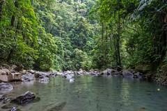 Natural Pool. Costa Rica (TravelJournals) Tags: trees naturaleza green nature water pool canon relax landscape agua costarica natural stones paisaje piscina piedras lafortuna 6d