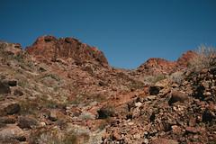 5R6K2449 (ATeshima) Tags: arizona nature havasu