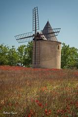 Moulin de Sannes (Patrice Faur) Tags: moulin sony poppy luberon vaucluse coquelicots sannes sonya57 50mmf18sonydt moulindesannes