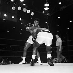 Mohamed Ali, su ltimo round bajo los proyectores / Imagen: AFP (Seal Informativa) Tags: square unitedstates florida miami match actionsport boxeur championnatdumonde