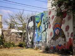 (Mariano Montes | HDsuperbikeVideos) Tags: street city streetart art argentina pared photography nikon mural flickr photographie arte ciudad fotografia crdoba cba artecallejero muralismo crdobaargentina streetartcordoba nikonargentina ciudaddecrdoba flickrcordoba muralismocordoba