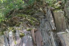 ckuchem-1454 (christine_kuchem) Tags: ahrtal anbau anbaugebiet eifel felsen rotweinwanderweg schiefer schieferfelsen sommer weinanbau weinberg weintraubenanbau weintrauben