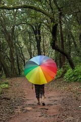 Matheran-5431 (Satish Chelluri) Tags: satishchelluri satishchelluriphotography matheran maharastra umbrella mansoon