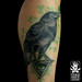 """crow • <a style=""""font-size:0.8em;"""" href=""""http://www.flickr.com/photos/94388750@N02/17176560808/"""" target=""""_blank"""">View on Flickr</a>"""