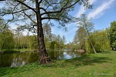 Sdpark 012 (Frank Guschmann) Tags: park nikon recreation parc erholung d7100 heerstrase sdparkspandau frankguschmann nikond7100
