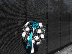 Washington D.C. Vietnam War Memorial (nadine3112) Tags: washingtondc vietnamwarmemorial colorkey colorkeying