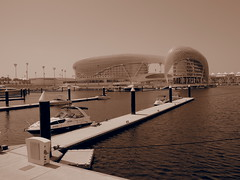 Viceroy hotel at The Yas Marina where Abu Dhabi Formula 1 is held annualy!