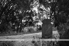 Isle of the Dead cemetery in B&W - Port Arthur, Tasmania (Naomi Rahim (thanks for 2 million hits)) Tags: travel bw history cemetery graveyard island blackwhite isleofthedead nikon decay australia graves historic unesco tasmania convict portarthur 2015 travelphotography nikond7000