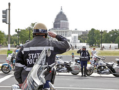 NPW Memorial Day '15 -- 74 (Bullneck) Tags: spring americana washingtondc federalcity nationalpoliceweek nationalmall cops police heroes uniform macho toughguy boots breeches motorcops motorcyclecops motorcyclepolice motorcycle harley motorescortgauntlet motorcopescortgauntlet bullgoons biglug bullrump troopers uscapitol statetroopers statepolice louisianastatepolice lsp