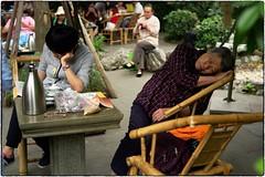 Teahouse Nap, Chengdu Buddhist Temple, May 21, 2016 (Maggie Osterberg) Tags: china street leica chengdu teahouse buddhisttemple maggieo zeisscsonnar5015 m9p colorefexpro4