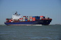 Rio Cadiz (larry_antwerp) Tags: netherlands ship nederland vessel schelde  schip  maersk  hulst hamburgsud      baalhoek 9360764 riocadiz
