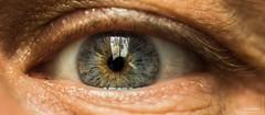 Mon oeil ! (icodac) Tags: iris macro canon oeil tarn vue bleue regard 100macro pupille cils lavaur ef100mmf28lmacroisusm eos70d