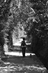 Au pays de la fourche (maxguitare1) Tags: blackandwhite woman dog chien france monochrome cane donna mujer nikon camino noiretblanc path femme sentiero chemin gard pero sauve nikond90
