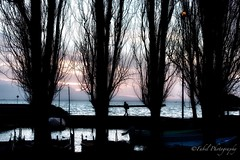 The lake in winter. (fabriziobelia) Tags: winter lake nature water trasimeno